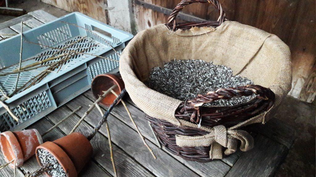 Die Zutaten für die Talgtöpfchen sind Knete, Stöcker und Sonnenblumenkerne, die hier auf fleißige Hände warteten