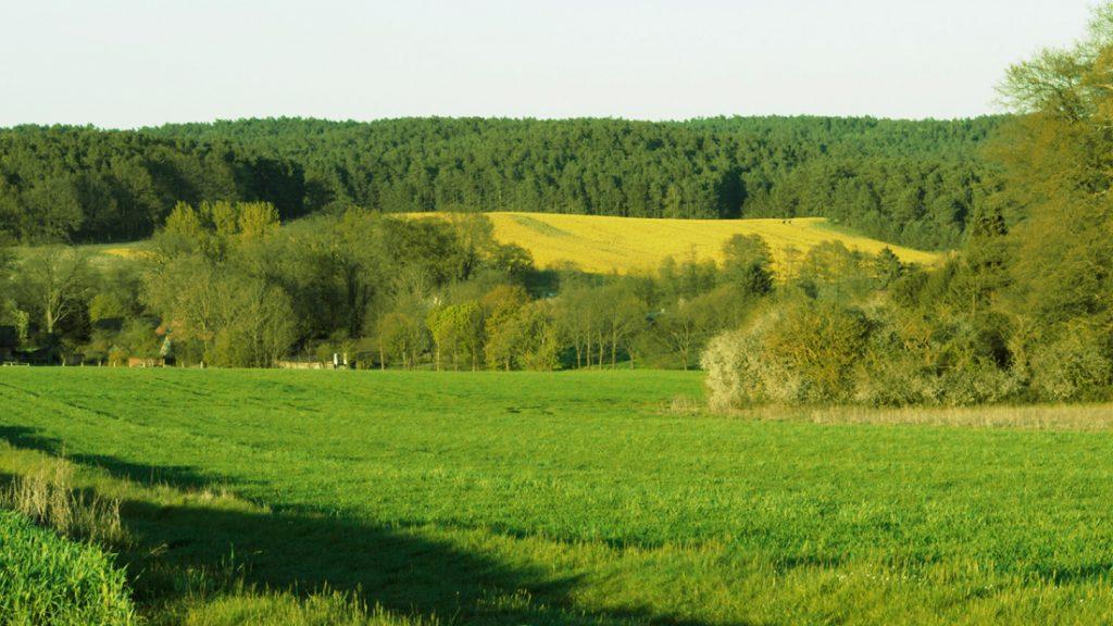 Ein weiter Blick über die Felder in Nieperfitz