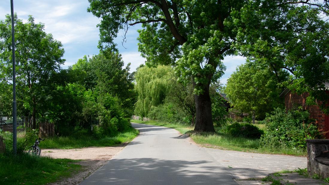 Vom LERNORT Hof aus startete der Spaziergang durch das Nieperfitzer Tal