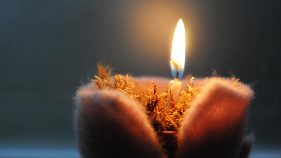 Das schöne warm leuchtende Kerzenlicht verbreitet adventliche Stimmung