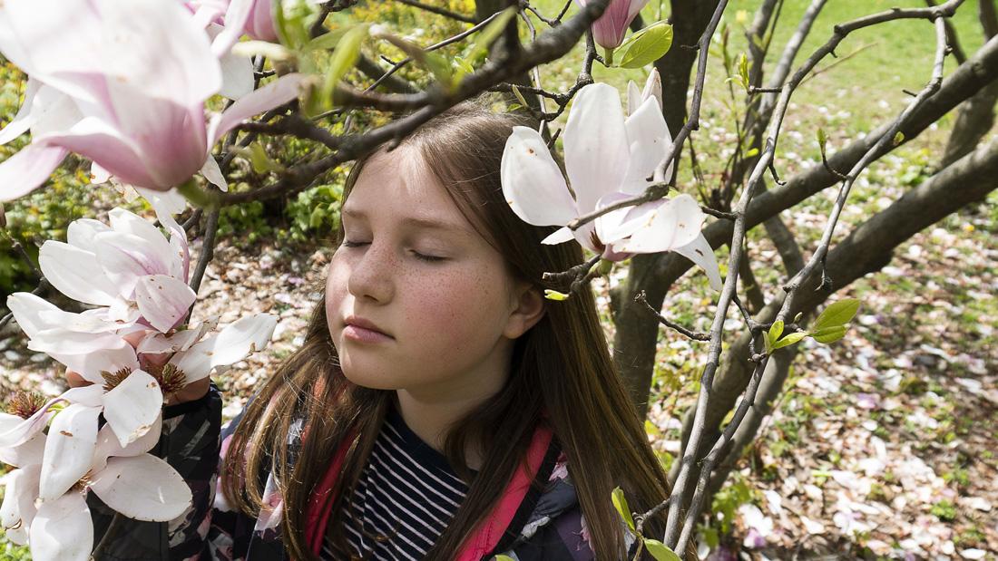 Ein Mädchen riecht intensiv mit geschlossenen Augen einem schön blühenden Baumn