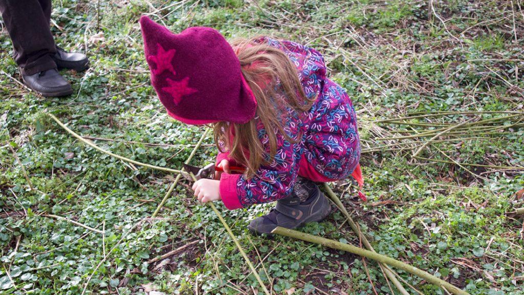 Ein kleines Mädchen schneidet Weidezweige