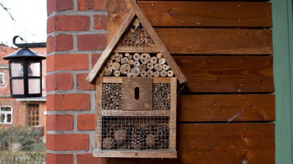 Am LERNORT Eingang hängt bereits ein kleines Insektenhotel