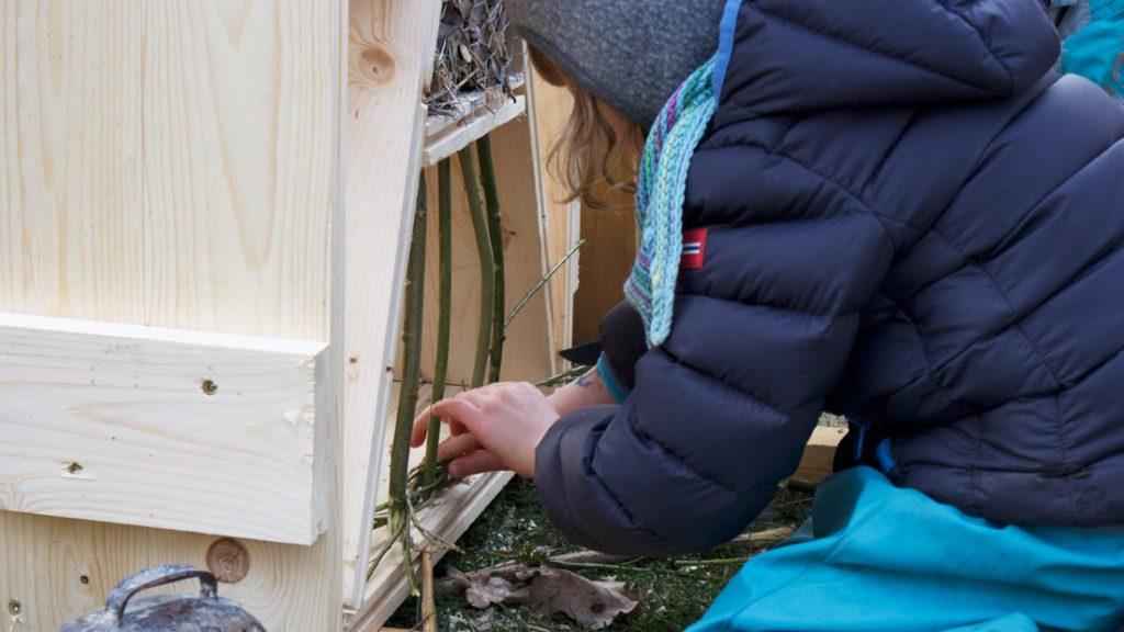 Ein Kind bestückt geschickt das Insektenhotel mit Weidenzweigen